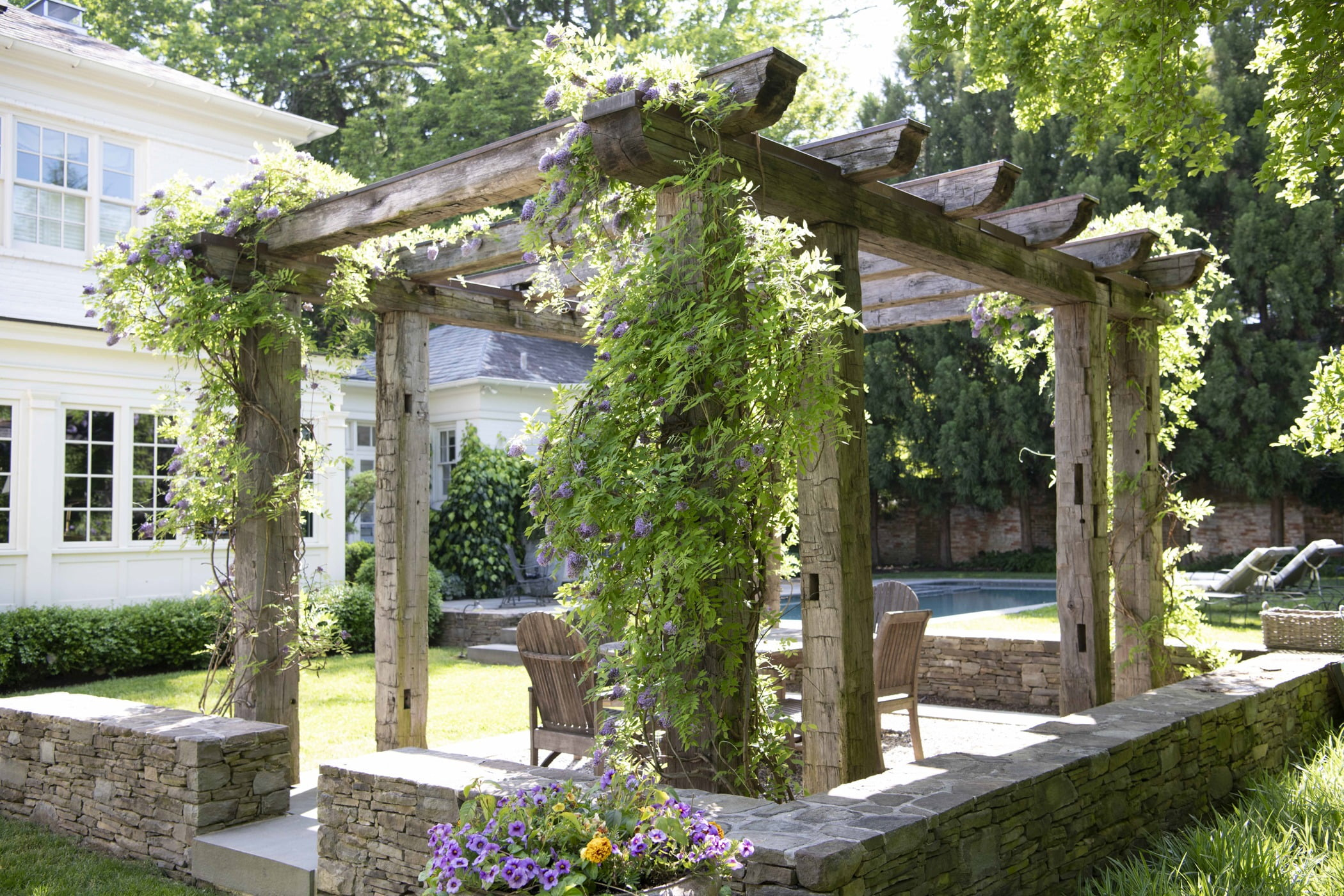Ivy-covered wooden pergola and outdoor seating and dining area