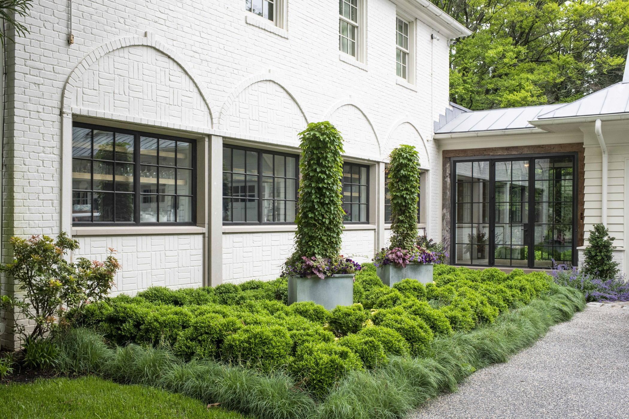 Backyard shrubbery and bush garden